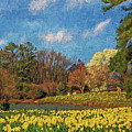 Lakeside Daffodils by Jerry Gammon