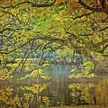 Lakeside by Harry Warrick