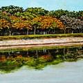 Lakeside Joggers Path by Usha Shantharam