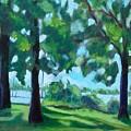 Lakeside Shadows by Jan Bennicoff