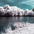 Lakeside4 by Natasha Rawls