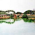 Lakeview Reflections by Usha Shantharam
