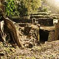 Lamanai Mayan Ruins Of Belize by Tatiana Travelways