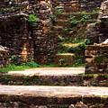 Lamanai Temple by Thomas R Fletcher