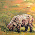 Lambkin by Cheryl Pass