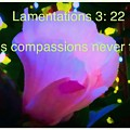 Lamentations His Compassions Never Fail by Debra Lynch