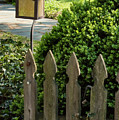 Lamp And Gate by Bob Phillips