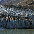 Lamplugh Glacier by Richard J Cassato