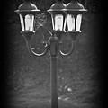Lamppost by Steve Cochran