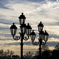 Lampposts by Patricia Montgomery