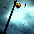 Lamps With Birds by Meirion Matthias