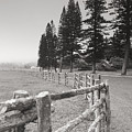 Lanai Fence by Ron Dahlquist - Printscapes