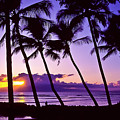 Lanai Sunset by Jim Cazel