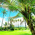 Lanakila 'ihi'ihi O Iehowa O Na Kaua Church Wailua Nui Keanae Maui Hawaii by Sharon Mau