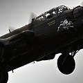 Lancaster Raf by Angel Ciesniarska