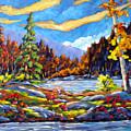 Land Of Lakes by Richard T Pranke