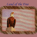 Land Of The Free by John M Bailey
