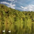 Landingville Lake Pennsylvania by David Dehner
