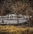Landlocked Marina  by Ray Congrove