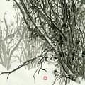 Landscape - 78 by River Han