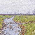 Landscape At Sluis by Paul Baum