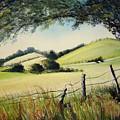 Landscape Bn by Veronique Radelet