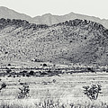 Landscape Galisteo Nm I10u by Otri Park