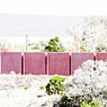 Landscape Galisteo Nm J10l by Otri Park