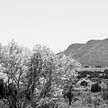 Landscape Galisteo Nm J10o by Otri Park