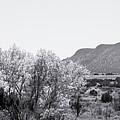 Landscape Galisteo Nm J10p by Otri Park