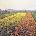 Landscape by Gustave Caillebotte