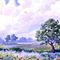 Landscape In Blues by Cheryl Hamilton