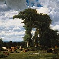 Landscape With Cattle At Limousin by MotionAge Designs