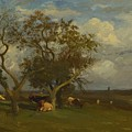 Landscape With Cows by Dupre Jules