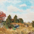 Landscape With Fox by Mark Carlson
