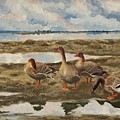 Landscape With Geese by Celestial Images