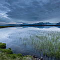 Landscape With Water Grass by Panoramic Images