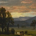 Landscape_with_cattle by Celestial Images