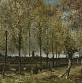 Lane With Poplars Near Nuenen by Artistic Panda