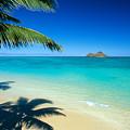 Lanikai Beach by Dana Edmunds - Printscapes
