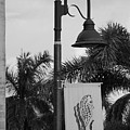 Lantana Lamp Post by Rob Hans