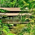 Lanterman's Mill Covered Bridge by Lisa Wooten