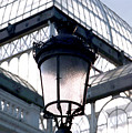 Lantern In Front Of The Crystal Palace, Madrid by Alynne Landers