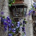 Lantern N Vines by Sheri Bartoszek