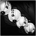 Lanterns by Tanya Harrison