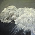 Lap Dog by Elizabeth Ellis