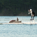 Large Dog On A Water Jet Pack by Les Palenik