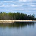 Large Pond by Linda Kerkau