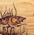 Largemouth Bass by Ron Haist