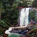 Las Marias Puerto Rico Waterfall by Luis F Rodriguez